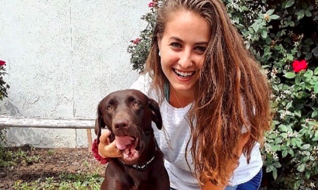 Abigail with chocolate lab working dog