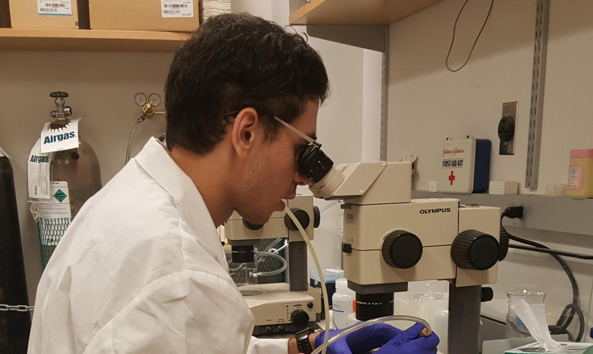 Mohamed with microscope