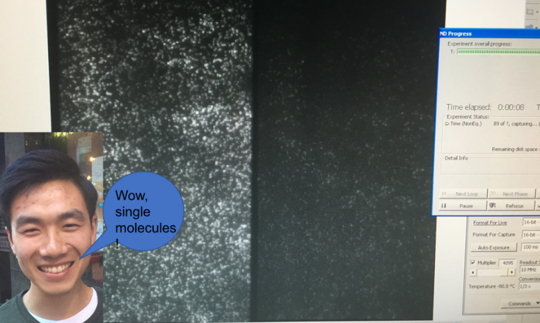 """Example of single molecule fluorescence microscopy with an insert of Kevin and a word bubble saying """"wow cool"""""""