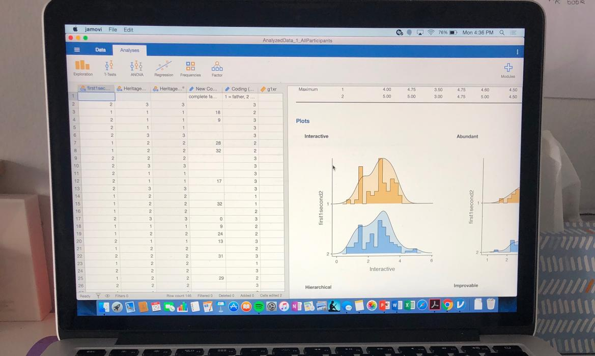 Picture of graphs on a computer screen.