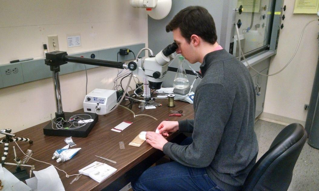 Jakub working at a microscope